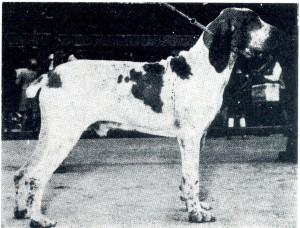 Capo delle Bandite, uno dei grandi razzatori degli anni cinquanta