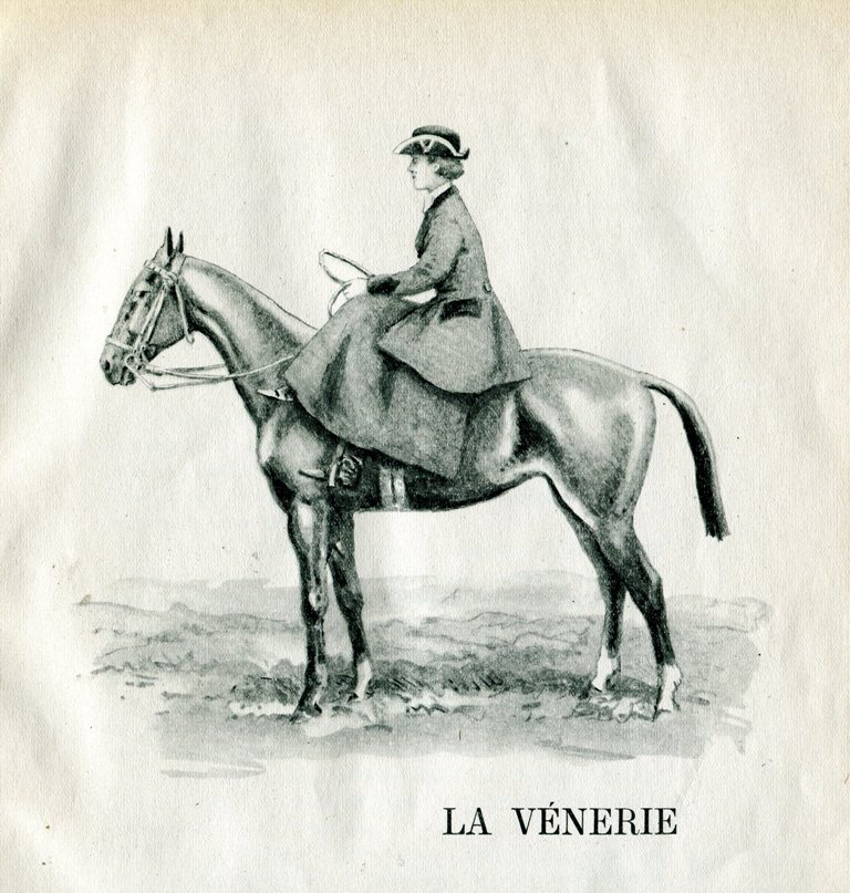 Venerie003