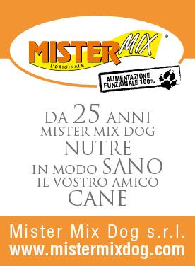 Mister Mix God
