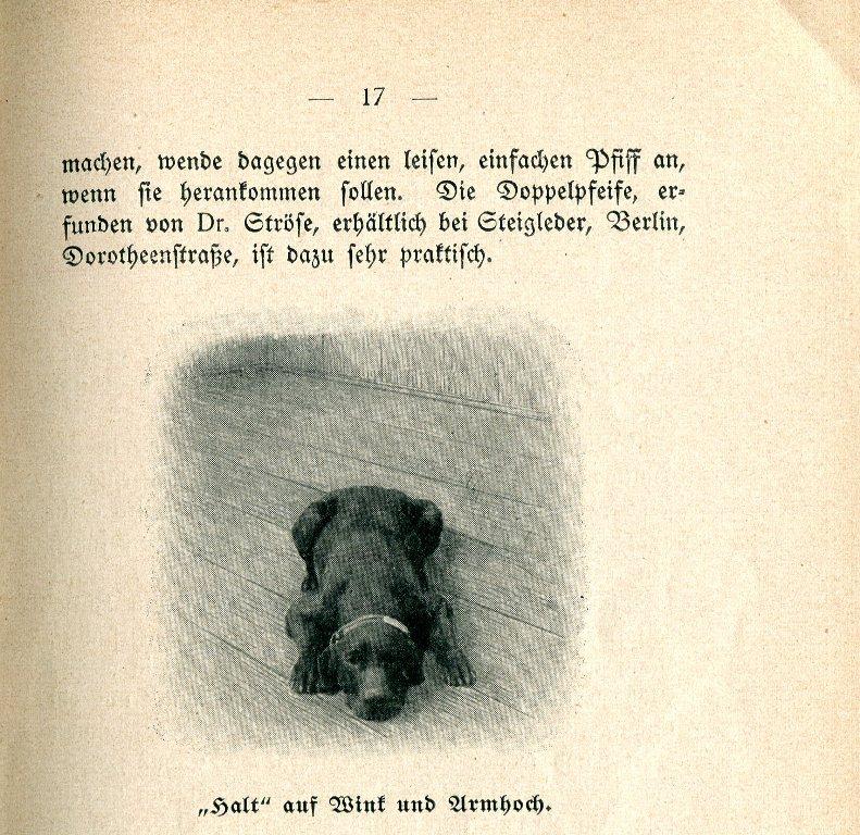 Heder012