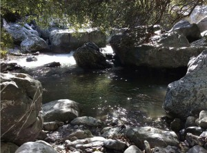 Svendita-fiume-Frido
