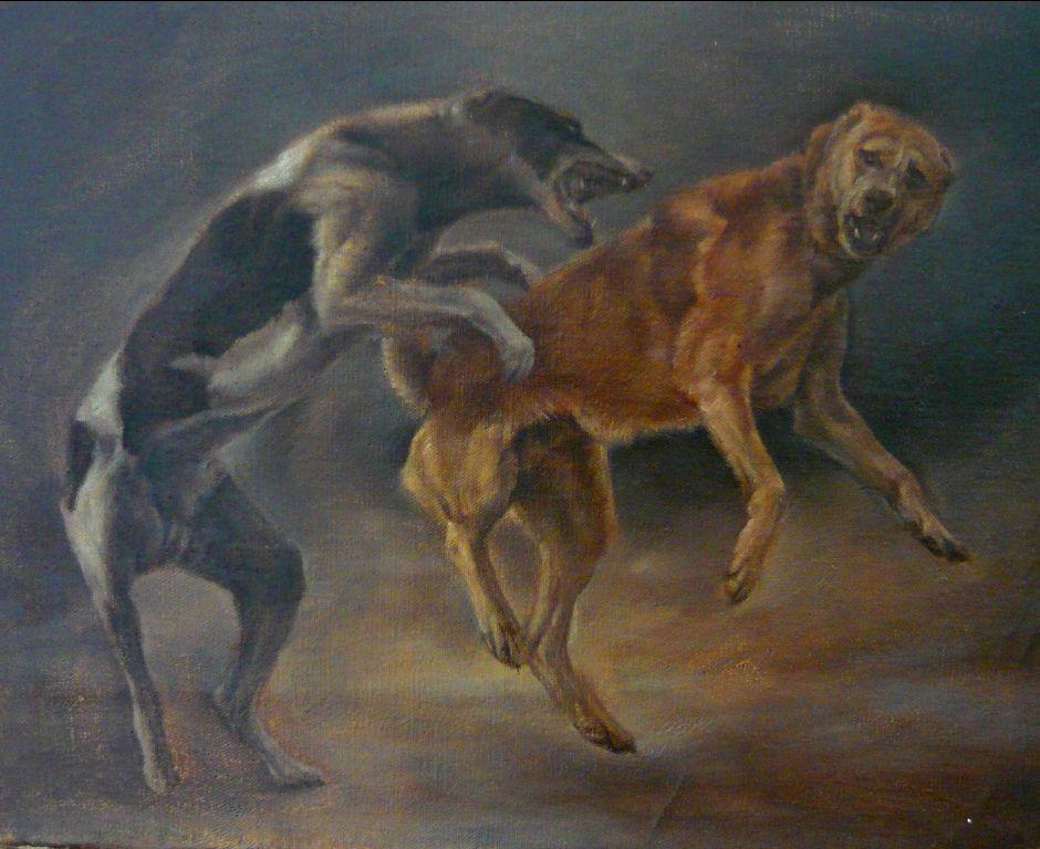combat chiens 2